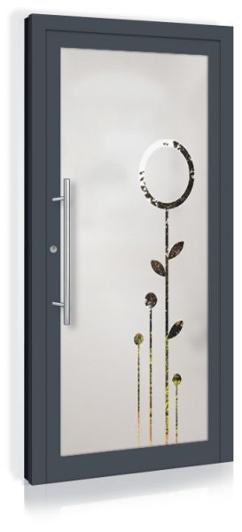 F&R VETRO-Line Ganzglashaustür Modell-Natura
